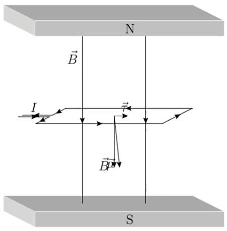 EE_campo_vibração